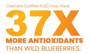 37 times more antioxidants then blueberries